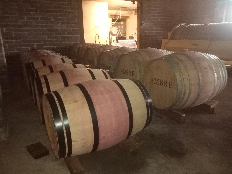élevage fut de chêne vin rouge biodyamie Domaine Ambre tarn 81